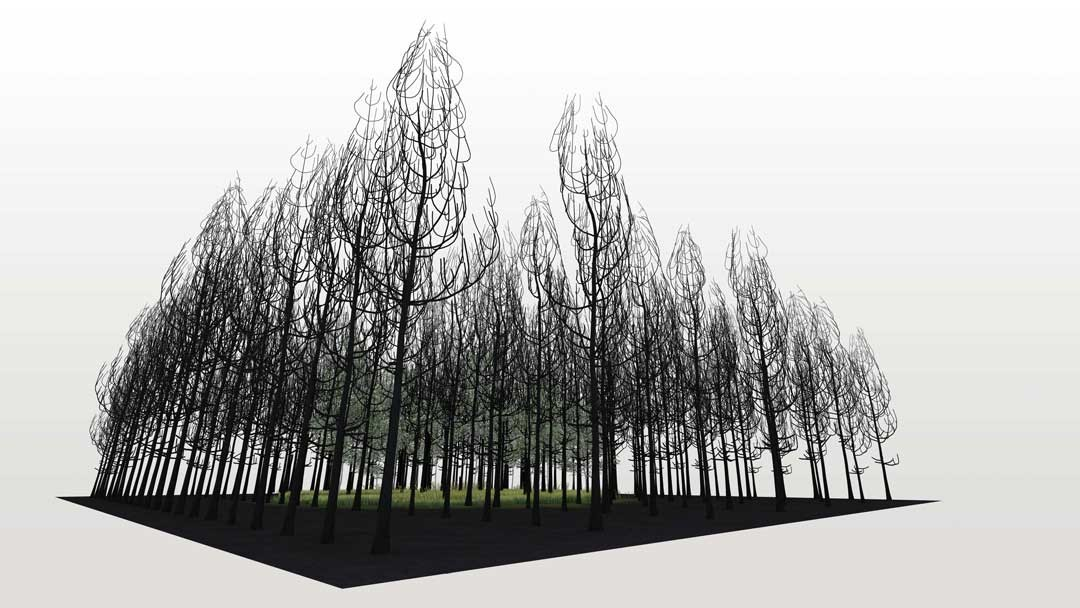 <BODY><div>Superflux, The Possibility of a Forest, 2021</div><div>© Superflux </div><div> </div></BODY>